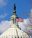 Statue of Freedom with flag flying over US House of Representatives (8576931279).jpg