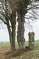 Steinheim - 2014-12-28 - 34 - Antoniusstein (2).jpg