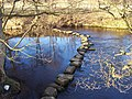 Stepping Stones, River Derwent - geograph.org.uk - 133468.jpg