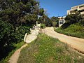 Steps and lane leading up from Praia dos Aveiros 5 March 2015 (1).JPG