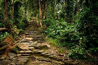 Ciudad Perdida - Image: Stone Stairway to Ciudad Perdida