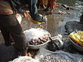 Storing fresh fish in ice at Sassoon Docks in Mumbai..JPG