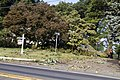 Storm Damage Montgomery County Maryland June 29 2012 (7473958776).jpg