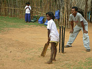 Street Cricket Batter India