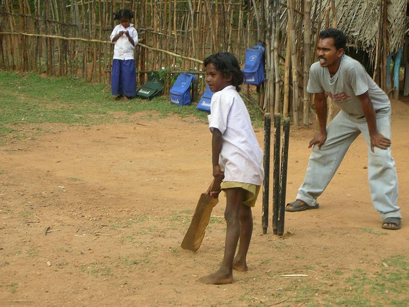 Street Cricket Batter India.jpg