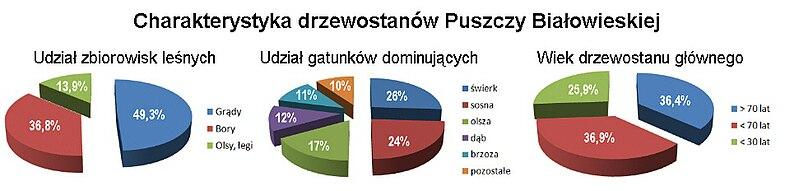 Struktura drzewostanow Puszczy Bialowieskiej.jpg