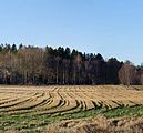 Stubble field in Brastad - 2.jpg