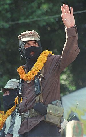 "Zapatista Army of National Liberation - Wearing a headset. ""Marcha del Color de la Tierra"" (2001)."