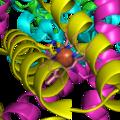 Succinate Dehygrogenase 1YQ3 Haem group.png