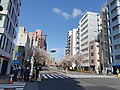 Sunny day in Hiroo 2.jpg