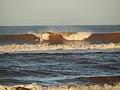 Surf en olas de mar.JPG