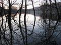 Svetloba in tema na Doberdobskem jezeru Luci e tenebre su lago di Doberdob (13215555935).jpg