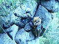 Szkolenie górskie 02.jpg