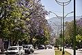 Tafí Viejo Avenida Alem Tarcos 1.jpg