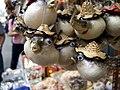 Tai O pufferfish.jpg