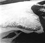 Taku Glacier, terminus of tidewater glacier, September 1, 1970 (GLACIERS 6195).jpg