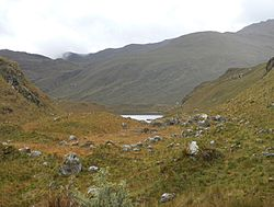 Tarhuish valley at Laguna Udrecocha.jpg