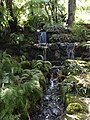 Tasmania gardens water.jpg