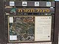 Tel Shimron 15.jpg