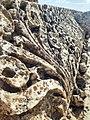 Temple of Jupiter, Baalbek 28212.jpg