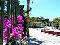 Teneriffa - Costa Adeje - Hotel Jardines de Nivaria - panoramio.jpg