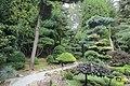 The Japanese garden, Jarków (32019763551).jpg