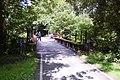 The Mawddach Trail, Railway Bridge over Afon Wnion - geograph.org.uk - 1428516.jpg