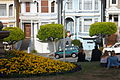 The Painted Ladies 06.JPG