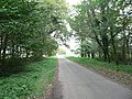 The Road To Sparham - geograph.org.uk - 275296.jpg