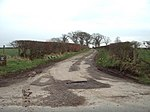File:The Road to Down By Rigg - geograph.org.uk - 351537.jpg