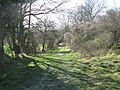 The bridleway up on to Giant Hill - geograph.org.uk - 1215678.jpg