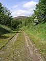 The former Waverley Railway Line - geograph.org.uk - 442463.jpg
