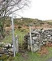 The path to Cefn Du - geograph.org.uk - 322465.jpg