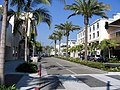 The view up Rodeo Drive - Flickr - TimWilson.jpg