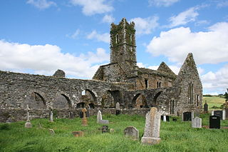 Timoleague Friary human settlement