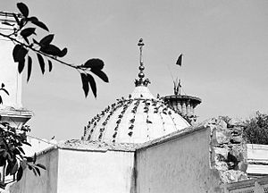 Phool Walon Ki Sair - Dargah of Qutbuddin Bakhtiar Kaki, Mehrauli