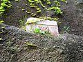 Tomba di Virgilio (Vergiliano) 6.JPG