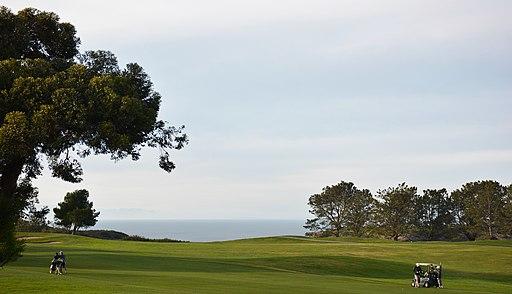 Torrey Pines, San Diego, CA, USA - panoramio (42)