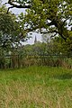 Towards Cranham Hall - geograph.org.uk - 791114.jpg