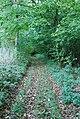Track beside Fontmell Wood - geograph.org.uk - 589646.jpg