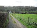 Track to Glanrhiew Farm - geograph.org.uk - 1565142.jpg