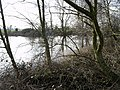 Trackside Pond - geograph.org.uk - 365558.jpg