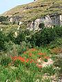 Trail Caria-Tropea04.jpg