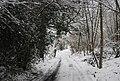 Treacherous conditions on Frank's Hollow Rd through Birchett's Wood - geograph.org.uk - 1670651.jpg