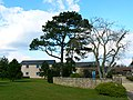 Trees and offices, South Marston Industrial Estate, Swindon - geograph.org.uk - 753125.jpg