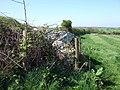 Trewalter-Trewallter Llwyd burial chamber - geograph.org.uk - 421044.jpg