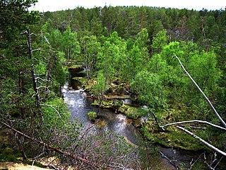 wilderness area in Inari, Finland