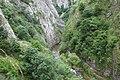 Turda Gorges (4672941294).jpg