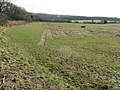 Turf cuttings on Holdens Farm - geograph.org.uk - 1172723.jpg