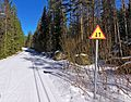 Two-way sign on ski track.jpg